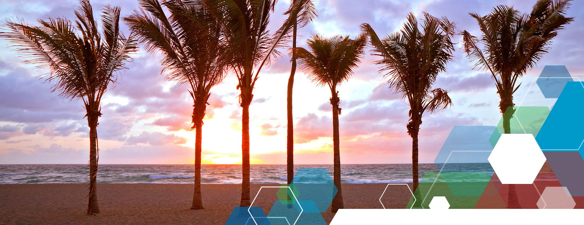 Logisticare Florida Facility Network Downloads